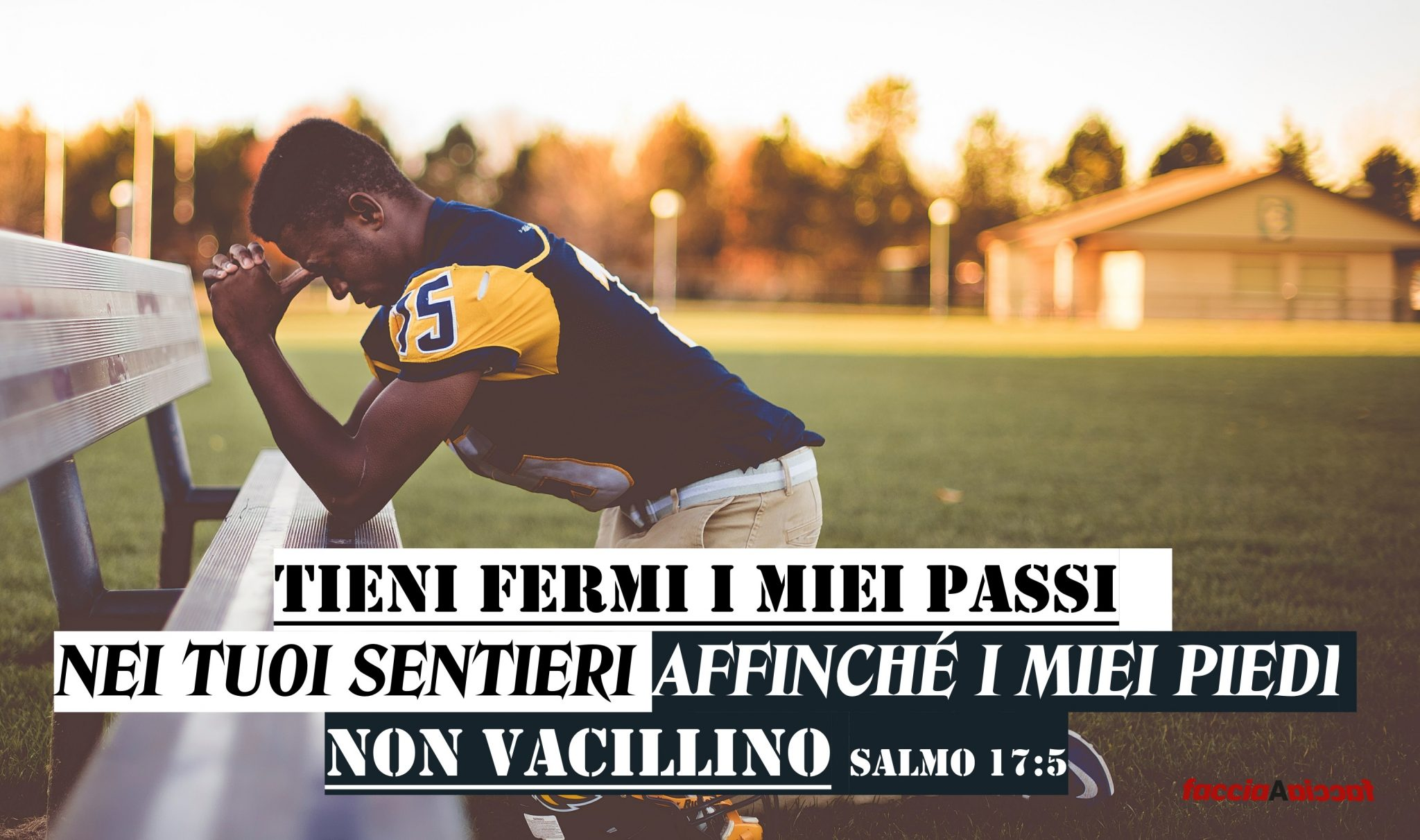 SALMO 17-5